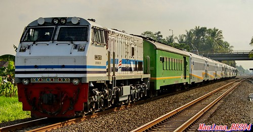 Argo Dwipangga Train