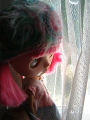 IMG_5950...Amor looks out the lace curtain window
