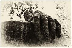 The hand of Giant (Rinogmb) Tags: bw italy giant europa europe italia hand mano gigante viterbo biancoenero bomarzo sacredgrove sacrobosco imostridibomarzo