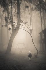 kid and his playground (dinesh maneer) Tags: playground fog kid mood moody play fineart foggy