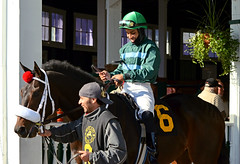 "2012-11-16 (64) r2 Armando Ayuso on #6 Deep Sea Tale (JLeeFleenor) Tags: photos photography marylandracing marylandhorseracing md laurelpark jockey جُوكِي ""赛马骑师"" jinete ""競馬騎手"" dżokej jocheu คนขี่ม้าแข่ง jóquei žokej kilparatsastaja rennreiter fantino ""경마 기수"" жокей jokey người horses thoroughbreds equine equestrian cheval cavalo cavallo cavall caballo pferd paard perd hevonen hest hestur cal kon konj beygir capall ceffyl cuddy yarraman faras alogo soos kuda uma pfeerd koin حصان кон 马 häst άλογο סוס घोड़ा 馬 koń лошадь bay maryland"