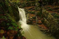 Nouvelle cascade au dessus du creux billard - crouzet migette (francky25) Tags: au du billard cascade nouvelle franchecomté doubs dessus creux crouzet migette
