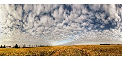 Botna in a mild Winter. (Sam ) Tags: winter sky panorama clouds landscape europa europe sam himmel wolken poland polska polen landschaft wideangel lubsko ghren grzyn