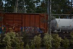 DTS_1788 (VIAL GRAFFITI) Tags: bench graffiti texas houston trains freighttrains freight graffititrain benching fr8trains fr8heaven dailybench