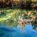 Blue Springs Reflections, Blue Springs State Park, Florida