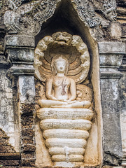 Buddha with Naga