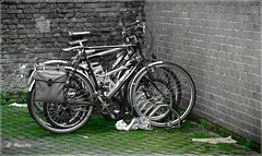 fietsen (marctriumph) Tags: blackandwhite green bicycle blackwhite zwartwit bicycles brickwall fietsen fiets muur canon85mmf18 canon85mm18 canonf18 canon85mm herenfiets