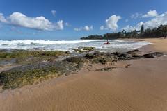 Surfer (devrieda) Tags: hawaii kauai haena haenastatepark haenabeachpark