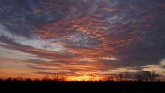 P1100280 (A Million Shards of Light) Tags: pink blue trees sunset sky orange moon ice nature clouds twilight peace dusk connecticut horizon atmosphere february fairfield easton cirrus