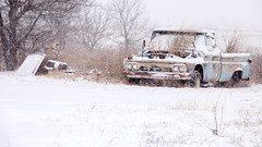 The Grass Is Always Greener Except When You Can't Start Your Car (natestation2) Tags: old snow oklahoma grass truck snowstorm rusted february blizzard destroyed gmc