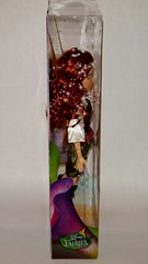Zarina Disney Fairies Doll - 10'' - US Disney Store Purchase - First Look - Boxed - Full Left Side View (drj1828) Tags: us doll boxed zarina purchase disneystore firstlook 10inch disneyfairies flutterwings thepiratefairy