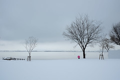 umbrella in the snow Lake Biwa (jibutare) Tags: lake snow fuji f14 fujifilm  biwako  lakebiwa xe1 fujix xf35mm f14r
