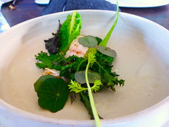 Roasted turbot and cabbages, NOMA