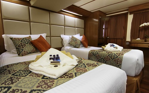 Deluxe Twin Cabin