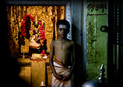 Young Boy With Painted Forehead Posing In Sri Ranganathaswamy Temple Trichy, India (Eric Lafforgue Photography) Tags: shirtless portrait people india color colour horizontal night temple kid candle altar indoors offering inside spirituality facepaint hindu hinduism blackhair deity tamilnadu oneperson trichy darkhair placeofworship colorfulwall tiruchi traditionalclothing colorimage lookingatcamera indianpeople standupstraight waistup trichinopoly oneboyonly tiruchirappalli semidressed onechildonly oneteenageboyonly earlyteen traditionalpaintingontheface oneyoungboyonly paintedforehead