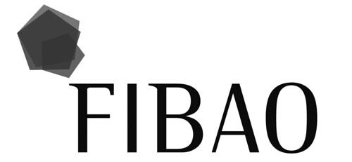 logo BN 2