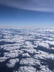 endless ocean of skies