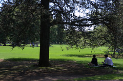 Picknick in the park