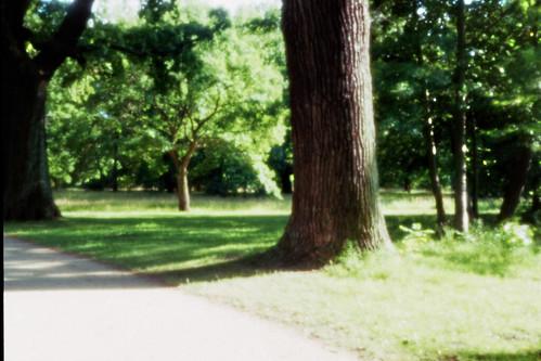 Schlosspark Charlottenburg 1
