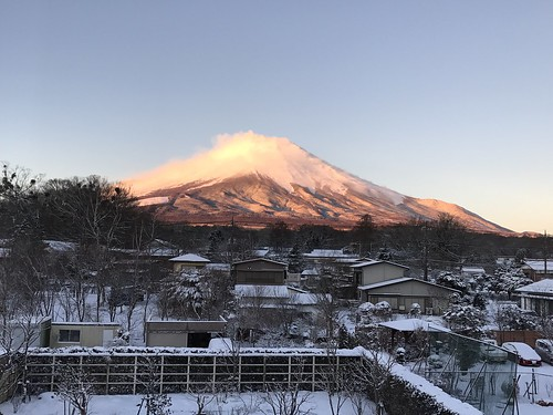 When I woke up, I woke up to this beautiful view from my room. Good morning, Mount Fuji.