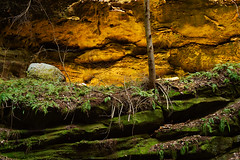 Cave Glow (jswigal) Tags: hocking hills park conkles hollow cantwell cliffs cliff old mans man cave sandstone stone rocks geology nature intimate landscape ohio woods woodland green yellow tan blue happy peaceful pretty beautiful gorgeous gorge outdoors outside tree hemlock fern plant moss leaves spring fall summer season seasons sony alpha a7r a7 minolta rokkor