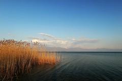 Lake Prespa / Преспанско езеро (Alessio Vincenzo Liquori) Tags: lake prespa езеро преспа преспанскоезеро nature wilderness wide wideangle canon eos m5 polarizer