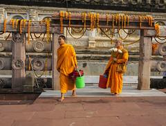 Naranja (Nebelkuss) Tags: india bihar bodhgaia bodhgaya asia naranja orange monje monk guirnalda garland fujixt1 fujinonxf23f14 colores colours