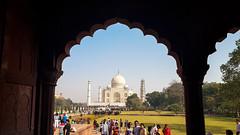 Taj Mahal (13)