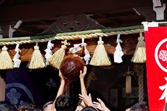 tamaseri276l (ふんどし) Tags: 福間浦玉せり17 fundoshi festival festivals japan 福 間 浦 玉 せ り 1 7 ふんどし