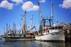 IMG_1866 (Blue Turtle Trawler) Tags: fortmyersbeach shrimpboats sh