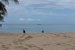 Beach Life 02