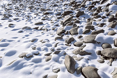 Rocks covered with snow (♥Oxygen♥) Tags: snow cold winter rough rocks snowcovered outdoors square stones stony arctic barents coast day frost frosty ice kola landscape nature nobody north ocean overcast polar puddle reflection rock russia sea shore stone water river mountain altai