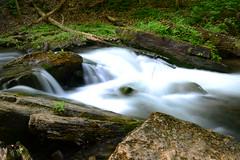DSC_9305 (Luella Maria) Tags: falls waterfalls decew