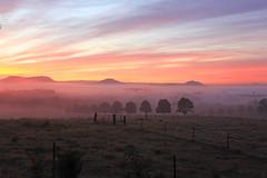 lambs valley (Justin Mckinney Images) Tags: morning blue orange landscape colours purple australian valley hunter lambsvalley