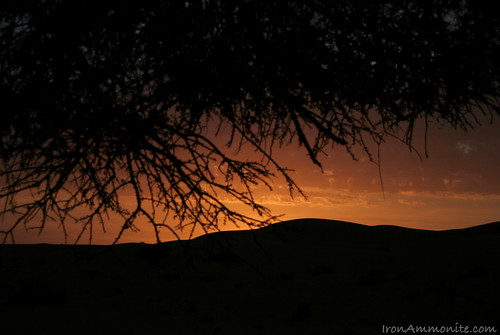 Sunset in the Sahara-2.jpg