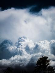 138/365 : Tormenta tropical? (XiscoLara) Tags: 365 canonpowershots100 proyecto365