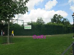 Dublin Zoo - Ireland (19 June) (ari_stevenfilan) Tags: ireland dublin emeraldisle cosligo irishluck