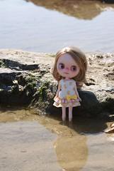 Cutie at the beach