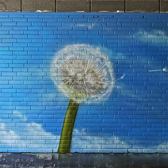 Mural (Akbar Sim) Tags: holland netherlands nederland tunnel denhaag thehague loosduinen kraayenstein akbarsimonse graphicsense akbarsim wwwgraphicsensenl