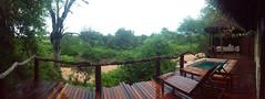 image (m_kabza) Tags: southafrica capetown timbavati sabisand tandatula simbambili