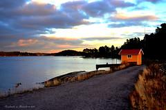 Koviksudde (Papa Razzi1) Tags: november autumn sea bay sweden 3499 koviksudde