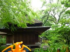 Charizard in Hiroshima, Hiroshima 19 (Shukkei-en Garden) (Kasadera) Tags: toys hiroshima figure pokemon pokmon  charizard   glurak  shukkeiengarden pokemonkids   dracaufeu