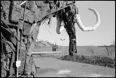 Nööt Nööt! (Elektrojänis) Tags: blackandwhite bw sculpture art film tag note peat mammoth agfa rodinal nikonf2 rodinal150 turf agfapanapx100 kalasatama suvilahti rodinal15017min