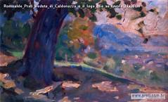Romualdo Prati Veduta di Caldonazzo e il lago olio su tavola 24x36cm