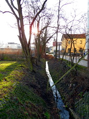 Bach (onnola) Tags: sun tree berlin water germany deutschland canal wasser ditch bach trench kanal sonne baum gwb gegenlicht graben guesswhereberlin guessedberlin backlightning gwbdrggkkrueger