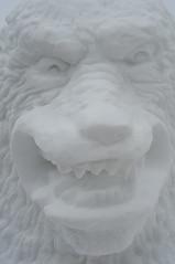 White Bear Head (SaySandra) Tags: bear sculpture white snow festival edmonton arts january deep culture saturday canadian alberta freeze nordic viking francophone 2014 albertaavenue