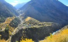 Autumn (mala singh) Tags: autumn india mountains valley himalayas himachalpradesh lahaul