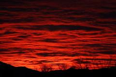 Sunset 2 25 2014 #43 (Az Skies Photography) Tags: sunset red sky orange cloud sun black rio yellow set skyline clouds canon skyscape eos rebel gold twilight dusk salmon az rico 25 februrary nightfall 2014 arizonasky arizonasunset 22514 rioricoaz goldent t2i ariozna arizonaskyline canoneosrebelt2i eosrebelt2i arizonaskyscape february252014 2252014