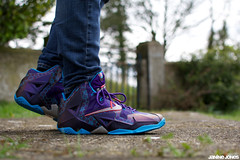 WDYWT: Lebron XI SLH (viewsfromthe519) Tags: pink blue basketball shoes purple 11 sneakers trainers nike runners kicks honeycomb eleven lebron xi slh onfeet wdywt summitlakehornets