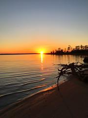 Thanksgiving Reflections (vastateparksstaff) Tags: belleislestatepark river rappahannockriver sunset ripple calm shore beach sand driftwood tree serenity beauty virginia reflection sky water
